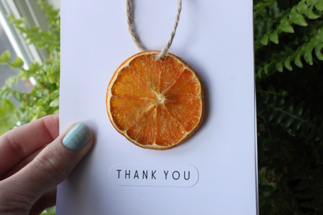 Dried Orange Segment Card