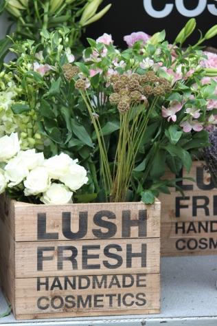 Lush flowers