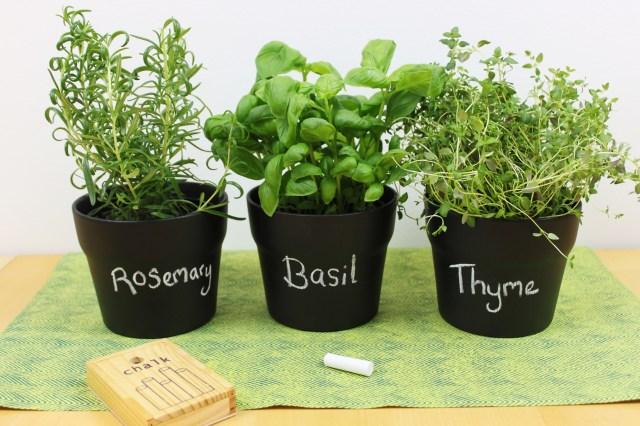 DIY Chalkboard plant pots