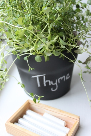 Thyme painted herb pot