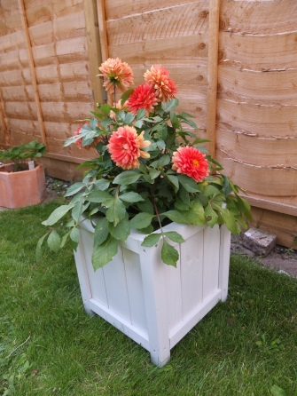 DIY Wooden Planter by Shelley Makes (43)