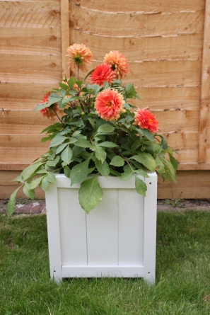 DIY Wooden Planter by Shelley Makes (45)