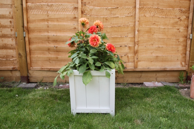 DIY Wooden Planter by Shelley Makes (46)